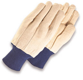 GLOVE - CANVAS
